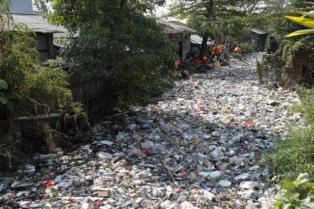 Workers collect trash during a clean-up on the Bahagia river in Bekasi, Indonesia, Thursday, August 1, 2019. (Photo by Tatan Syuflana/AP Photo)