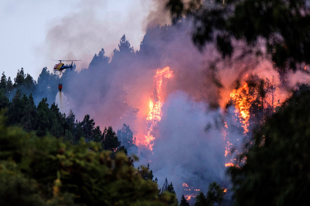 A firefighting helicopter spreads water over a forest fire broke up in the village of Valleseco, Gran Canaria island, Spain, 17 August 2019. Three roads had to be closed due to the fire. The island is on orange alert for hot temperatures reaching up to 37 Celsius degrees. (Photo by Angel Medina G./EPA/EFE)