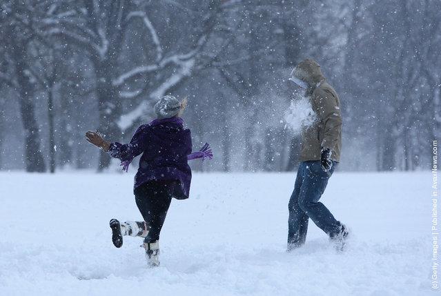 People throw snowballs in Kensington Gardens