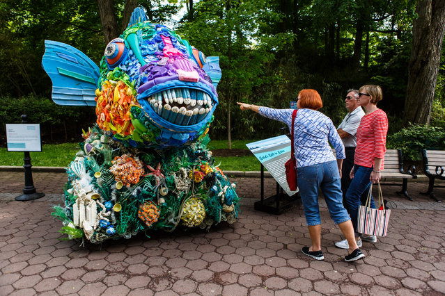 Visitors at the National Zoo check out a parrotfish made from found waste from the ocean in Washington, DC on May 23, 2016. The artwork can be seen at the National Zoo until September 5th. (Photo by Keith Lane/The Washington Post)