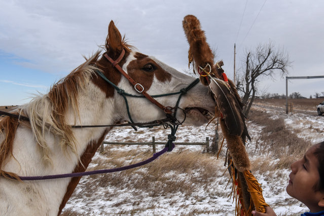 A Lakota boy places a sacred staff near a horse's snout during a horse ride to meet Brad Upton, descendant of the commander of the Wounded Knee massacre on the Cheyenne River reservation in Eagle Butte, South Dakota, November 6, 2019. (Photo by Stephanie Keith/Reuters)