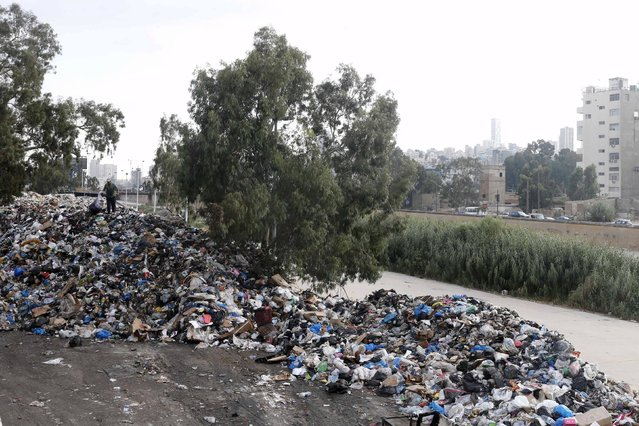 A scavenger sifts through garbage piled near Beirut river, Lebanon August 24, 2015. (Photo by Mohamed Azakir/Reuters)