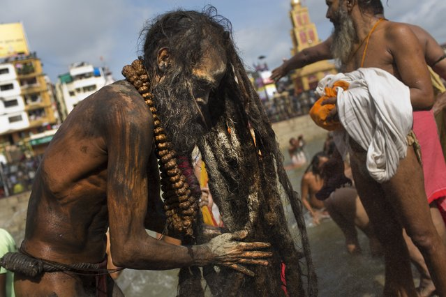 An Indian Sadhu, or Hindu holy man, rubs ash on his hair after a bath in the Godavari River during Kumbh Mela, or Pitcher Festival, in Nasik, India, Saturday, August 29, 2015. (Photo by Bernat Armangue/AP Photo)
