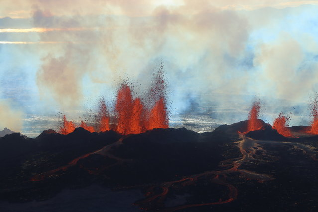 In this aerial view, fountains of lava, up to 60 meters high, spurt from a fissure in the ground on the north side of the Bardarbunga volcano in Iceland, Tuesday, September 2, 2014. The alert warning for the area surrounding Iceland's Bardarbunga volcano remained at orange on Tuesday, indicating that it is showing increased unrest with greater potential for an explosive eruption. (Photo by Stefano Di Nicolo/AP Photo)