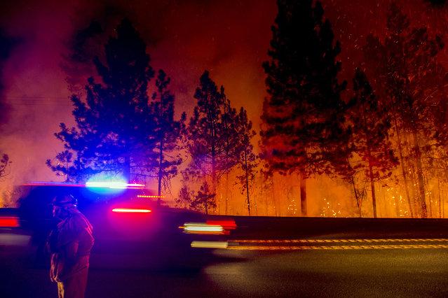 A firefighter battling the King Fire watches as a backfire burns along Highway 50 in Fresh Pond, California September 16, 2014. (Photo by Noah Berger/Reuters)