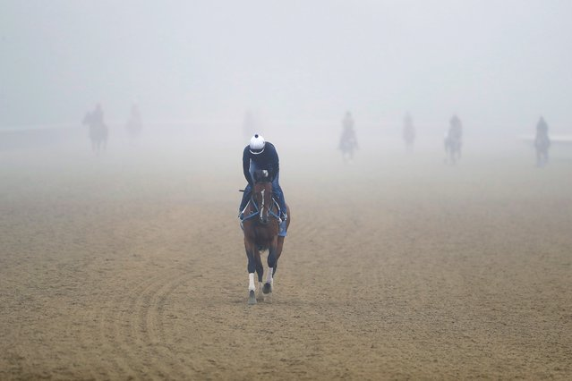 Riders work out horses in the early morning fog at Belmont Park in Elmont, N.Y., Thursday, June 18, 2020. The Belmont Stakes is scheduled to run on Saturday. (Photo by Seth Wenig/AP Photo)
