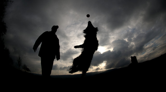 A man playes with his dog in Grossenwieden, northern Germany, Sunday, February 17, 2013. Meteorologists forecast a mixture of sun and snow falls in large parts of Germany for the upcoming days. (Photo by Julian Stratenschulte/AP Photo/DPA)