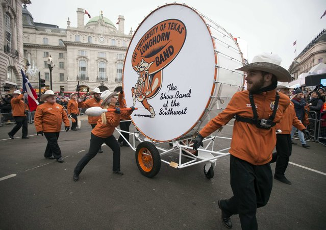"""Members of The University of Texas Longhorn Alumni Band perform with their bass drum, dubbed """"Big Bertha"""", during the annual New Year's Day Parade in London January 1, 2015. (Photo by Peter Nicholls/Reuters)"""