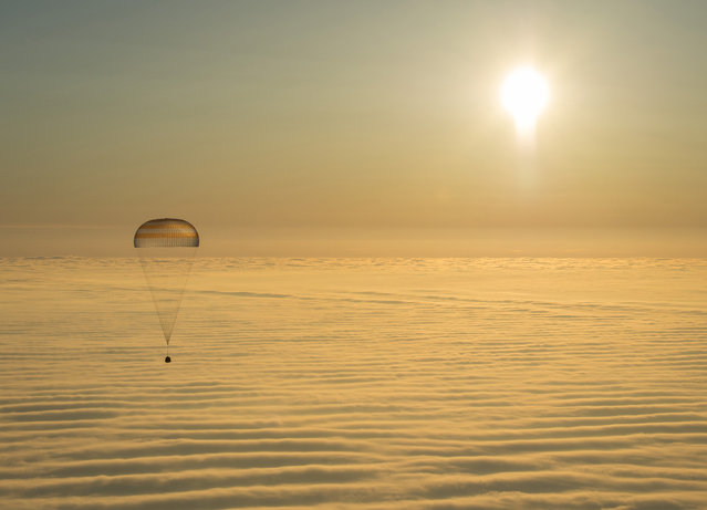The Soyuz TMA-14M capsule with International Space Station crew members Barry Wilmore of the U.S., Alexander Samokutyaev and Elena Serova of Russia as it descends beneath a parachute just before landing in central Kazakhstan, March 12, 2015. (Photo by Bill Ingalls/Reuters/NASA)