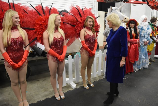 Camilla, Duchess of Cornwall meets performers at The London International Horse Show at Olympia Exhibition Centre on December 17, 2015 in London, England. (Photo by Stuart C. Wilson/WPA Pool/Getty Images)