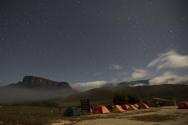 Kukenan (L) and Roraima mounts are seen from the Tec Camp, near Venezuela's border with Brazil January 14, 2015. (Photo by Carlos Garcia Rawlins/Reuters)