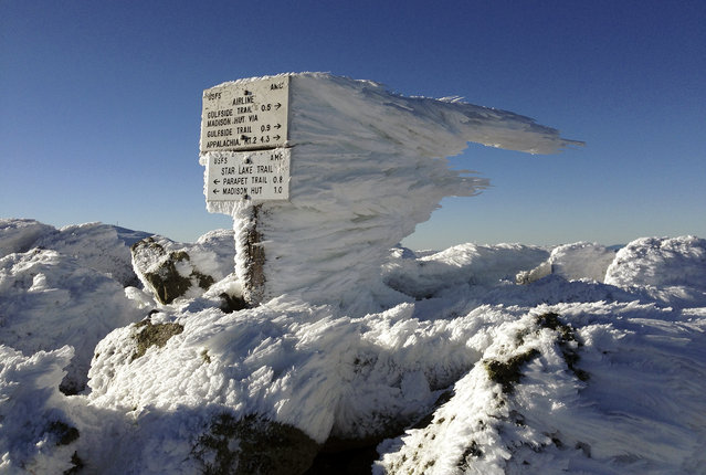 Rime ice extends several feet horizontally from a sign marking the summit of 5,774-foot Mount Adams, the second highest mountain in New England, on Tuesday, November 17, 2015, in northern New Hampshire. Monday's freezing fog and strong winds formed the rime ice, creating a winter wonderland above treeline in New Hampshire's aptly named White Mountains. (Photo by Robert F. Bukaty/AP Photo)