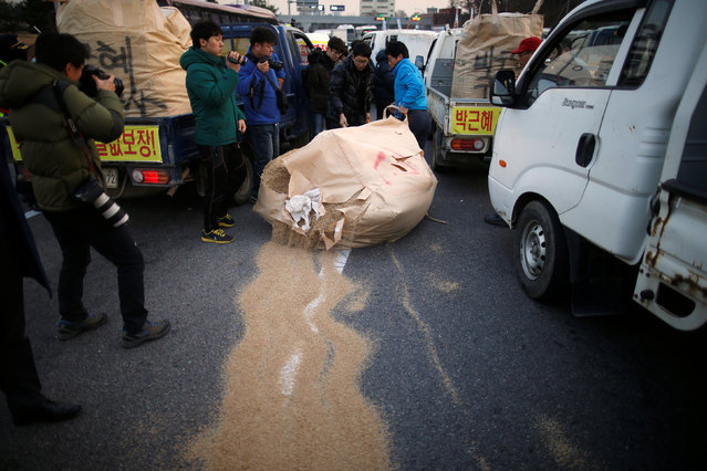 Farmers scatter rice brans as they are blocked while marching with their trucks toward Seoul to attend a weekend protest calling for South Korean President Park Geun-hye to step down, at a tollgate in Ansung, South Korea, November 25, 2016. (Photo by Kim Hong-Ji/Reuters)
