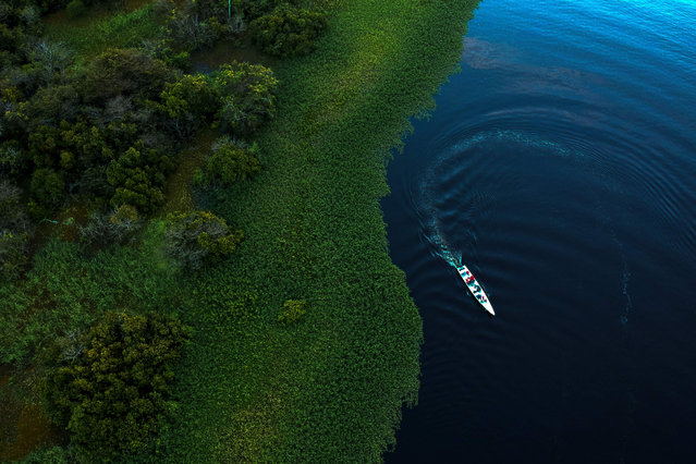 Drone view of Mamiraua Institute and WWF- Brazil researchers working in the area of Maciel Lake at Mamiraua Sustainable Development Reserve in Amazonas state, Brazil, on June 28, 2018. Drones are the new allies of investigations on Amazon river dolphins, a tool that will reduce costs and times of investigations. (Photo by Mauro Pimentel/AFP Photo)