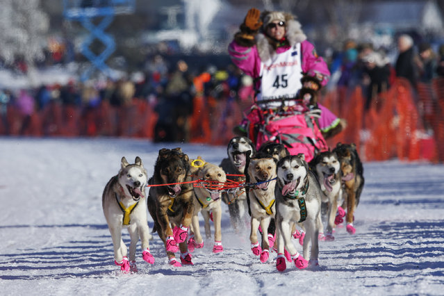 DeeDee Jonrowe and her team leave the start chute at the restart of the Iditarod Trail Sled Dog Race in Willow, Alaska March 6, 2016. (Photo by Nathaniel Wilder/Reuters)