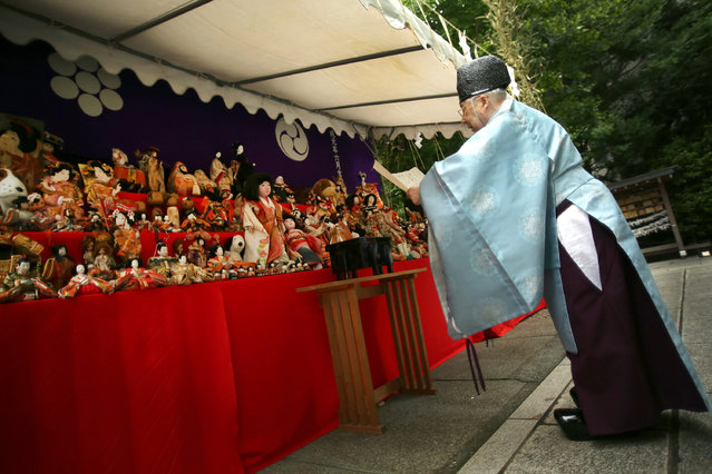 A Shinto priest prays to the dedicated dolls during the Festival of Repayment of Kindness at Dairoku-tensakaki Shrine in Tokyo, Saturday, May 16, 2015. (Photo by Eugene Hoshiko/AP Photo)