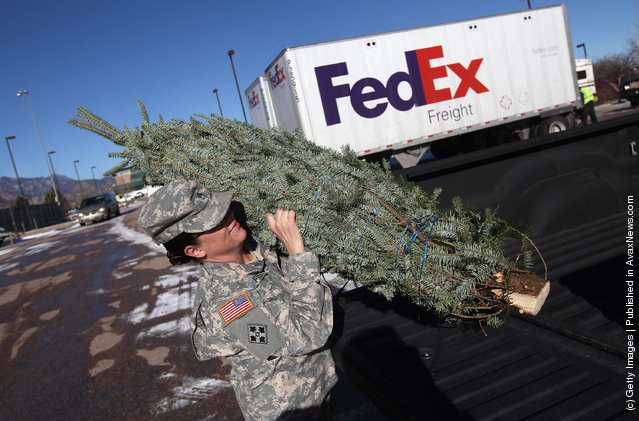 U.S. Army soldiers carry off free Christmas trees