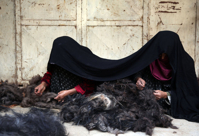 In this Wednesday, April 15, 2015 photo,  Afghan female laborers work at a traditional cashmere factory in Herat city, west of the capital Kabul, Afghanistan. Not so long ago, Afghan farmers collected the thick winter undercoat their goats shed every spring and threw it on the fire to heat their homes and cook their food. (Photo by Massoud Hossaini/AP Photo)