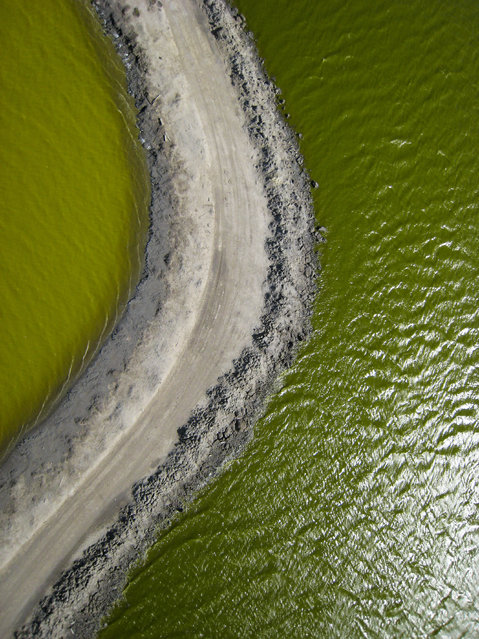 Aerial view of the salt ponds in San Francisco, California. (Photo by Cris Benton/Caters News)