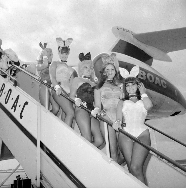A group of British Playboy Bunny girls (Kathleen Bascombe, Dolly Read, Catherine MacDonald and Doreen Allen) arriving at London Airport on a BOAC plane, 24th April 1966. (Photo by George Stroud/Express/Getty Images)