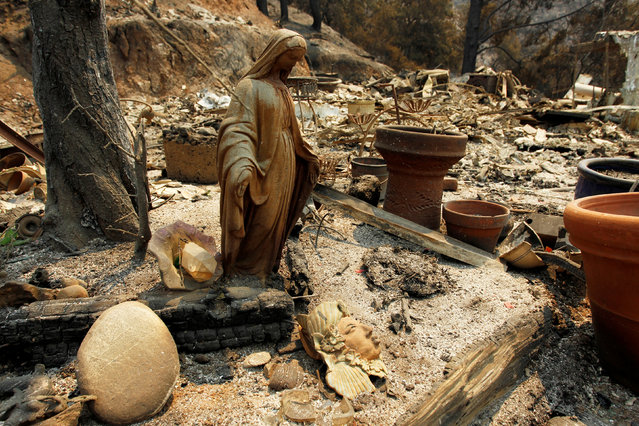 A charred Virgin Mary statue sits in a garden at the site of a destroyed home after the Soberanes Fire burned through the Palo Colorado area, north of Big Sur, California, July 31, 2016. (Photo by Michael Fiala/Reuters)