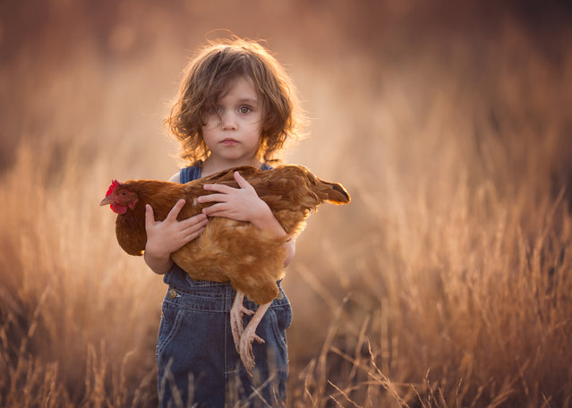 """""""Elliott and His Hen"""". A young farm boy gently cradles his favorite hen. Photo location: Kingman, Arizona. (Photo and caption by Lisa Holloway/National Geographic Photo Contest)"""