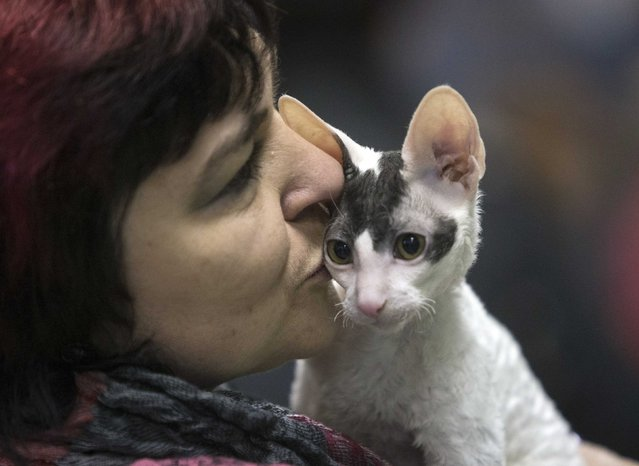 "A woman kisses a cat during the exhibition ""Autumn-2014"" in Minsk, November 23, 2014. (Photo by Vasily Fedosenko/Reuters)"