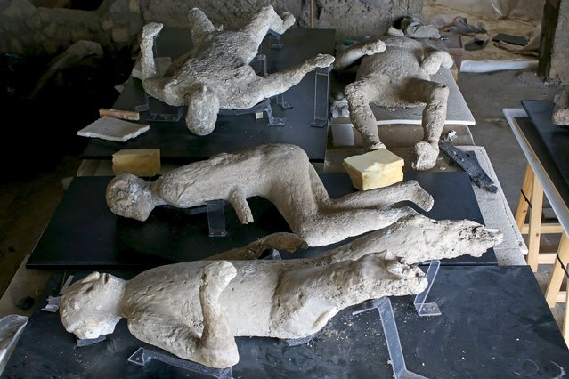 Plaster cast moulds of victims of the Mount Vesuvius eruption lie on a display table in a laboratory at Pompeii October 13, 2015. An expert team made up of archaeologists, radiologists, orthodontists and anthropologists began on September 2015 to use CAT scan technology (computerised axial tomography) to peer inside the plaster cast moulds of Pompeii's victims, in a study that has added more detail to previous findings. (Photo by Alessandro Bianchi/Reuters)