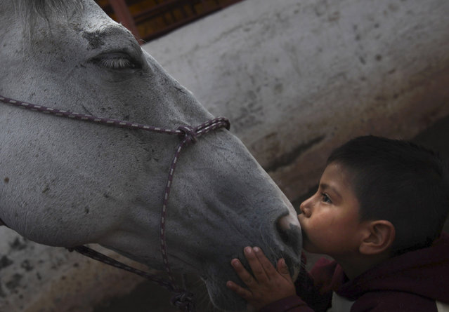 "In this August 26, 2014 file photo, 4-year-old patient Saul Valverde kisses Andariego, a 19-year-old veteran horse that retired from ""charreria"", the Mexican version of a rodeo, at a corral in southern Mexico City. Andariego now works as a therapy horse, helping children with special needs. In Mexico, the career of the charro horse usually runs about 10 to 12 years. (Photo by Marco Ugarte/AP Photo)"