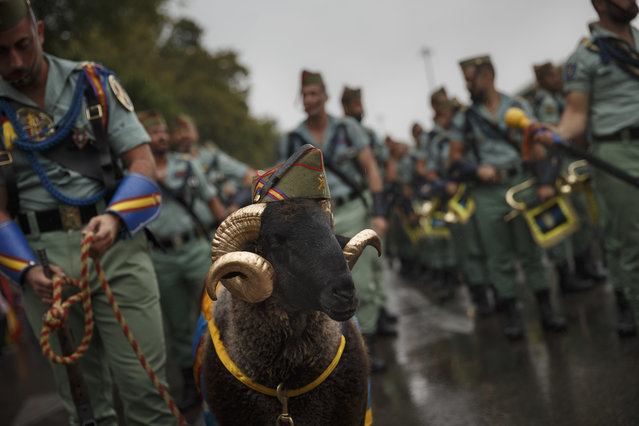 "Members of La Legion, an elite unit of the Spanish Army, including a goat they use as a pet wait for the start of a military parade as they celebrate a holiday known as ""Dia de la Hispanidad"" or Hispanic Day in Madrid, Wednesday, October 12, 2016. (Photo by Daniel Ochoa de Olza/AP Photo)"