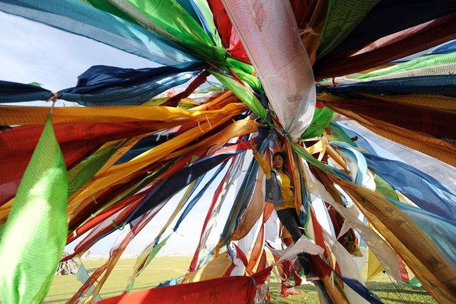 A worshipper hangs Tibetan prayer flags on a grassland in Tianjun county, on July 21, 2013. (Photo by Reuters/Stringer)