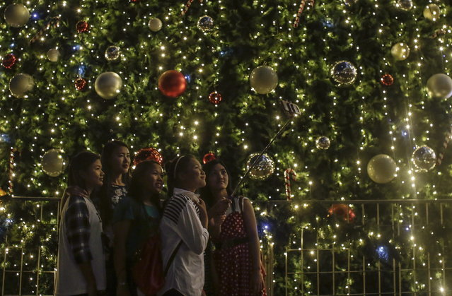 Women take a selfie in front of a Christmas trees in Kuala Lumpur, Malaysia, December 22, 2015. Christmas is celebrated by Christians on Dec. 25 to commemorate the birth of Jesus, the central figure of Christianity. (Photo by Fazry Ismail/EPA)