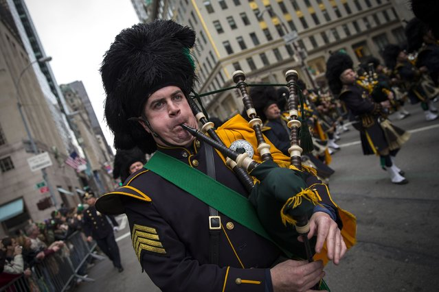 A bagpiper marches in the 254th New York City St. Patrick's Day parade up 5th Avenue in the Manhattan Borough of New York, March 17, 2015. (Photo by Mike Segar/Reuters)