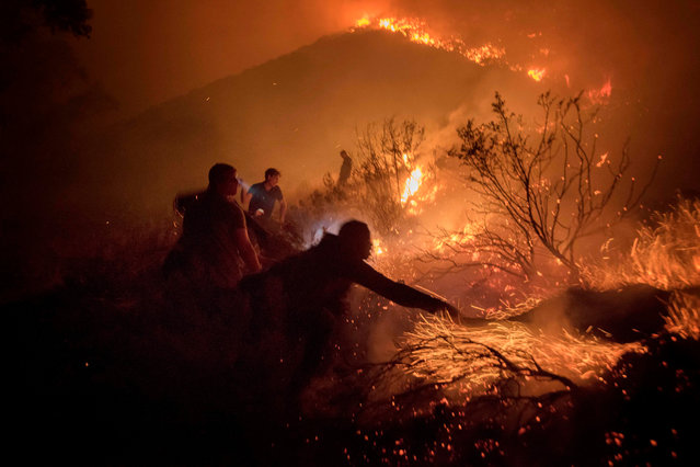 Volunteers and local residents use wet towels to fight one front of a large brush fire that started around the mountains in the city centre on January 27, 2019, in Cape Town. A fire, fanned by strong winds broke out in the afternoon, and came close to homes, but partly thanks to amateur firefighters, none were burnt. (Photo by Rodger Bosch/AFP Photo)