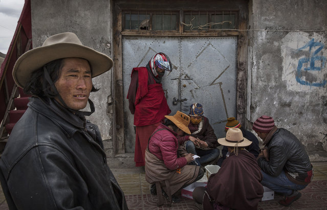 Tibetan nomads buy and sell cordycep fungus on May 20, 2016 at a market in Sershul on the Tibetan Plateau in the Garze Tibetan Autonomous Prefecture of Sichuan province. (Photo by Kevin Frayer/Getty Images)