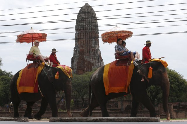 Tourists ride elephants in the ancient Thai capital Ayutthaya, north of Bangkok, Thailand, August 11, 2015. (Photo by Chaiwat Subprasom/Reuters)