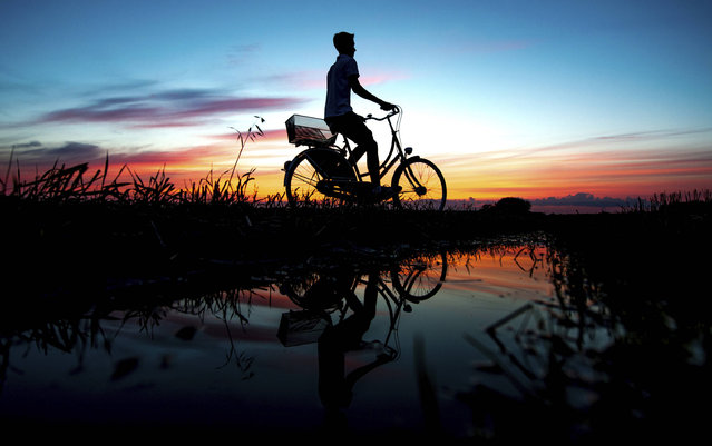 In this photo taken Monday, July 31, 2017 a young man cycling along a path is silhouetted against the sunset in Oldenburg, Germany. (Photo by Hauke-Christian Dittrich/DPA via AP Photo)