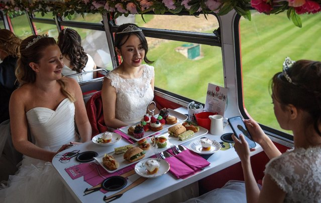 Debutantes sit at tables laid with cakes and sandwiches on the top deck of a Routemaster bus before leaving Boughton Monchelsea Place for the Queen Charlotte's Ball on September 9, 2017 in Maidstone, England. (Photo by Jack Taylor/Getty Images)