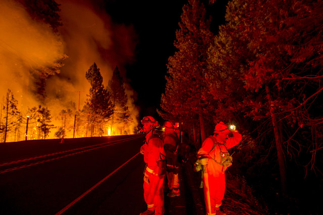 Inmate firefighters battling the King Fire watch for flying embers while a backfire burns along Highway 50 in Fresh Pond, California September 16, 2014. (Photo by Noah Berger/Reuters)