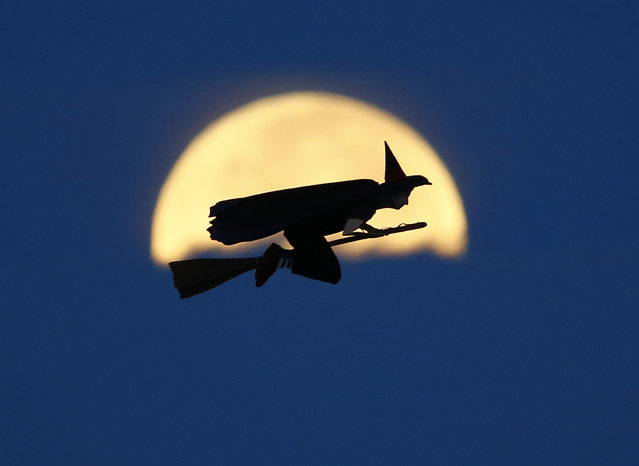 A radio-controlled flying witch makes a test flight past a moon setting into clouds along the pacific ocean in Carlsbad, California October 8, 2014. (Photo by Mike Blake/Reuters)