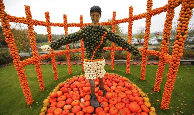 A discus thrower made from 9,750 pumpkins is displayed at the pumkins festival in Klaistow, south east of Berlin October 26, 2014. (Photo by Fabrizio Bensch/Reuters)