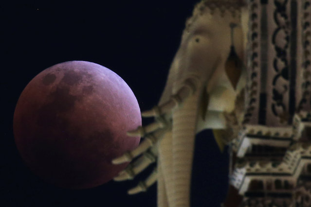"A ""super blood blue moon"" is seen during an eclipse behind an elephant statue at a temple in Bangkok, Thailand, January 31, 2018. (Photo by Athit Perawongmetha/Reuters)"