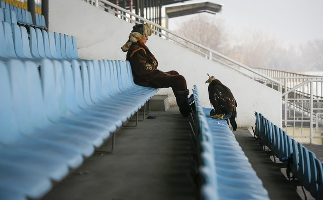 A hunter has a rest while sitting next to his tamed golden eagle in the grandstand of a hippodrome during an annual hunters competition in Almaty, Kazakhstan February 9, 2018. (Photo by Shamil Zhumatov/Reuters)