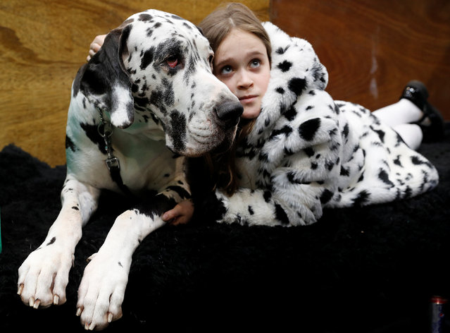 Claudia Kelleway lies with Ruby the Great Dane during the first day of the Crufts Dog Show in Birmingham, Britain March 8, 2018. (Photo by Darren Staples/Reuters)
