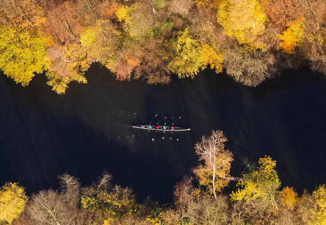A rowing boat passes trees in autumnal colors on a water channel in Hamburg, northern Germany, on November 8, 2015. (Photo by Daniel Bockwoldt/AFP Photo)