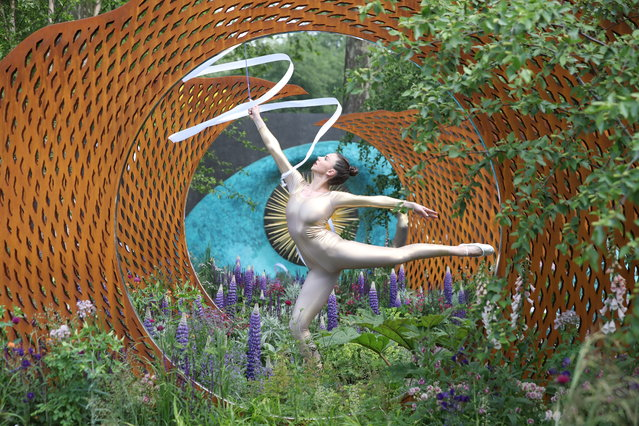 A dancer performs in The David Harber and Savills Garden at the 2018 Chelsea Flower Show in London on May 21, 2018. The Chelsea flower show, held annually in the grounds of the Royal Hospital Chelsea, opens to the public on May 22. (Photo by Daniel Leal-Olivas/AFP Photo)
