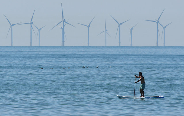 A man paddle boards, with an off-shore wind farm seen in the English Channel behind, during hot weather at Brighton in southern Britain, August 3, 2018. (Photo by Toby Melville/Reuters)