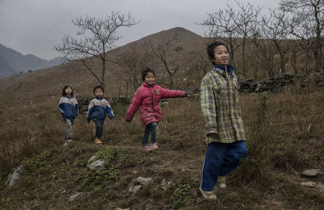 """""""Left behind"""" children from right to left, Luo Gan, 10, Luo Hongniu, 8, Luo Lie, 5, and Luo Hongni, 11, walk together while doing chores in the fields on December 18, 2016 in Anshun, China. (Photo by Kevin Frayer/Getty Images)"""