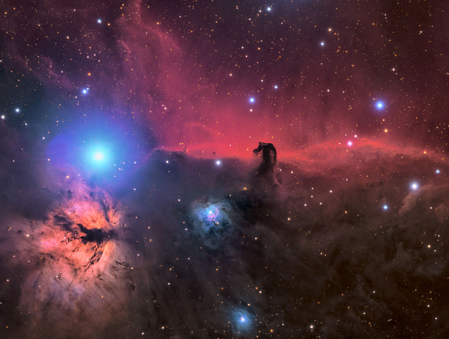 The Horsehead and Flame nebula. Connor Matherne (USA). The small pink filaments contrast beautifully against the blue reflection nebula. The photographer thinks of those small filaments as the cherry on top of this spectacular region of the night sky caught in a swirl of dust and gas. (Photo by Connor Matherne/National Maritime Museum)