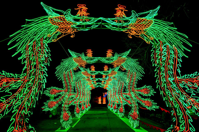 Light sculptures glow in the dark at the zoo in Cologne, Germany, 04 December 2019. (Photo by Sascha Steinbach/EPA/EFE)